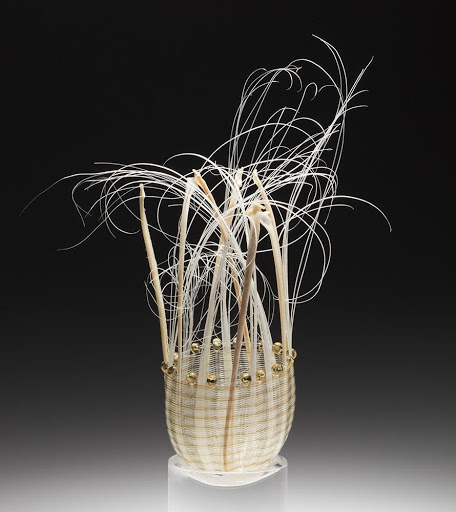gerri macmillian fishbone basket the scientific photographer